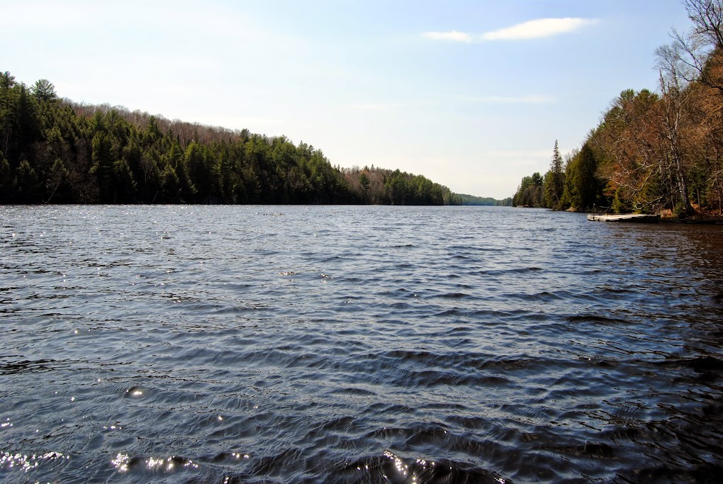 Pickerel River