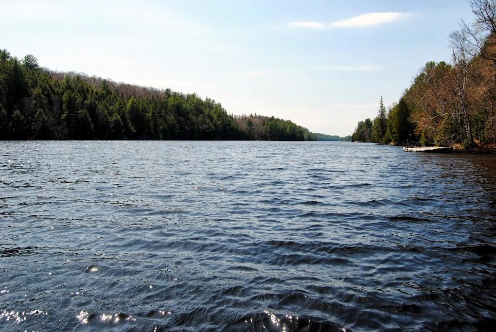 Pickerel River