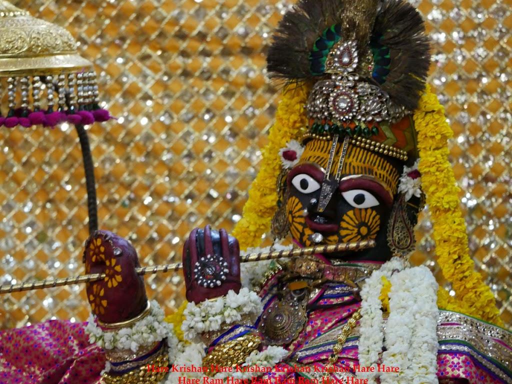 Radha Govind Devji Deity Darshan 30 Mar 2016  (13)