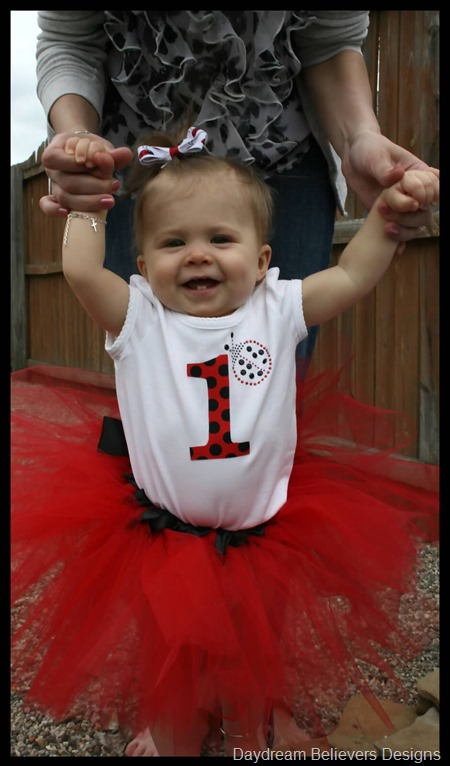 Ladybug first birthday party