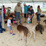 Fort Bend County Fair 2014 - 116_4329.JPG