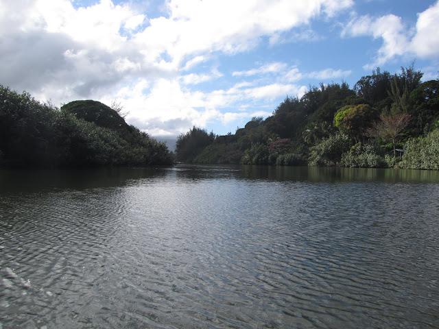 2012 - IMG_9182_Hanalei_River_Kayaking.JPG