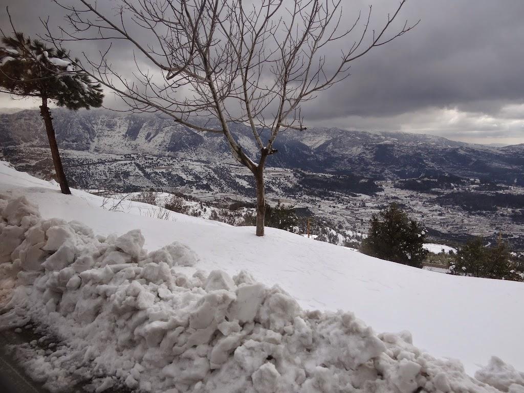Kard.Bechara Rai 21.02.2015 - DSC09933.JPG
