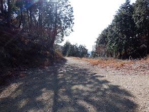 右の林道を歩く