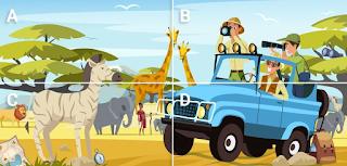 Safari Hidden Objects Quiz Answers - Gimmemore