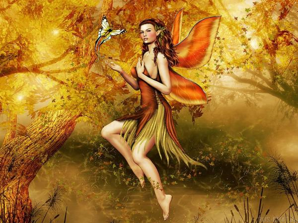 Flower Fairy And Butterfly, Fairies Girls
