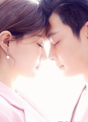 Destiny's Love / The Life Planner China Web Drama