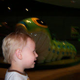 Houston Museum of Natural Science - 116_2846.JPG