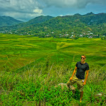 Spider Rice Fields, Flores, Indonesia
