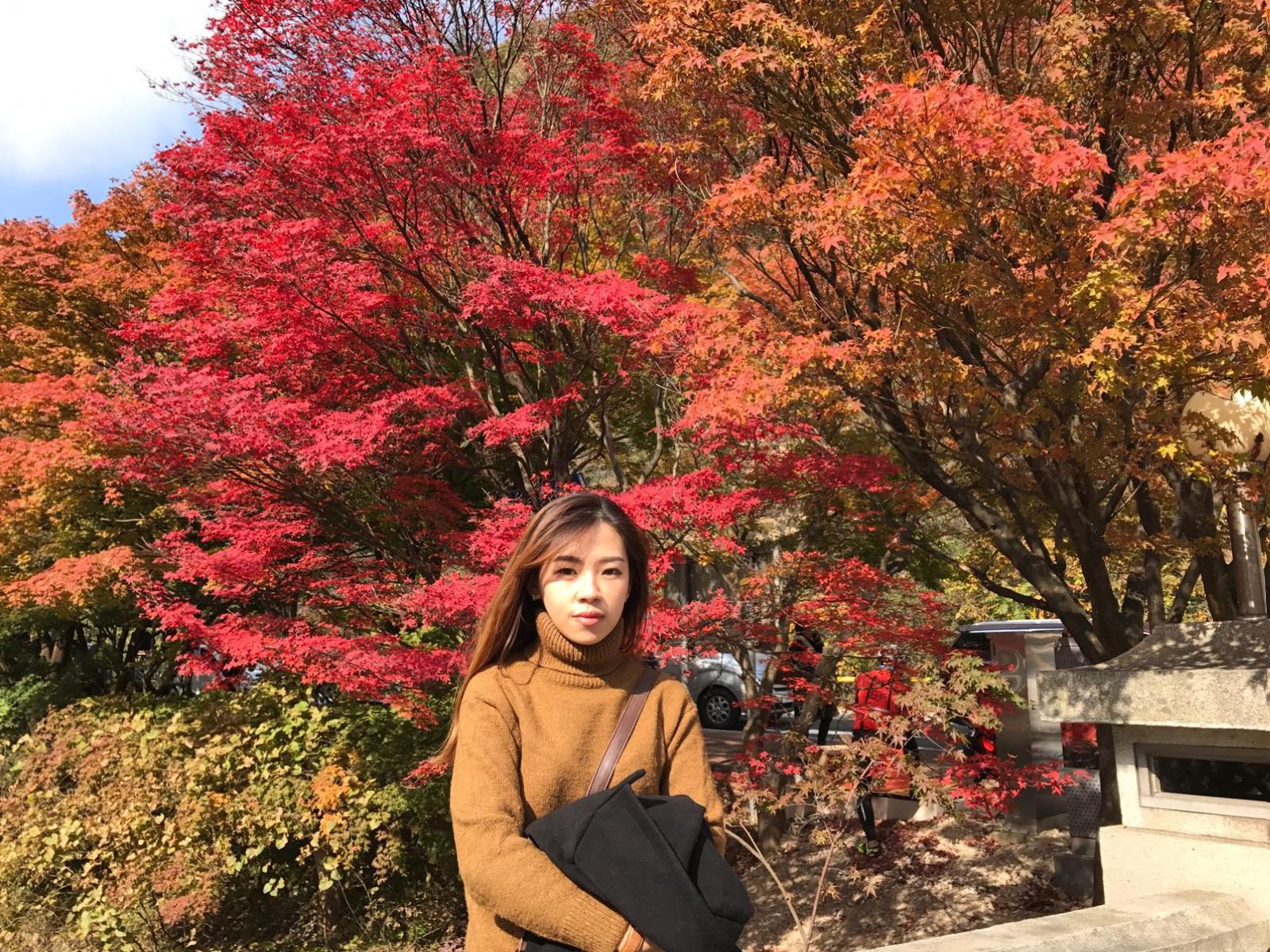 Eat Travel Repeat Korea ˂´ìž¥ì'° Naejangsan Maple Eco Park