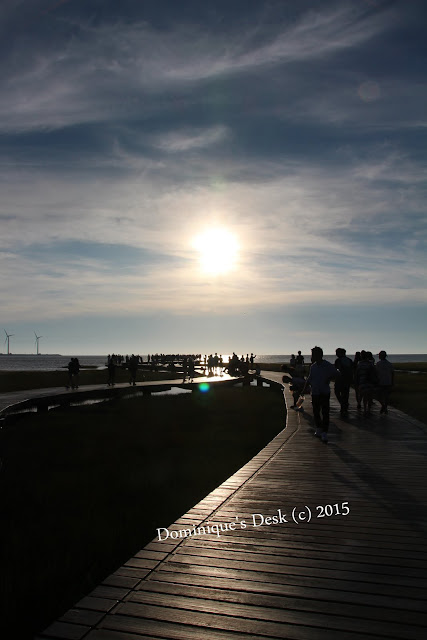 A capture of the sun while walking on the boardwalk
