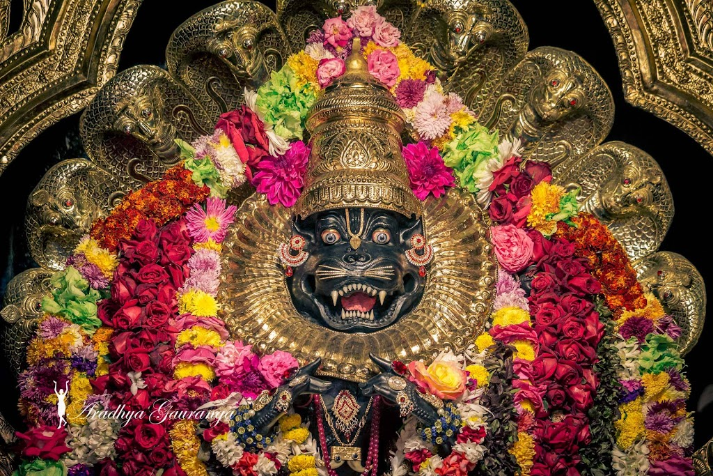 ISKCON Mayapur Deity Darshan 18 Jan 2017 (2)