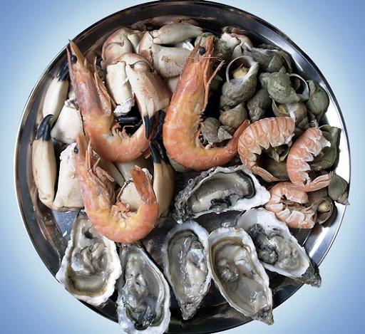 Puttur Sea Food Park in place of Govt Medical College | ಸರ್ಕಾರಿ ಮೆಡಿಕಲ್ ಕಾಲೇಜ್ ಸ್ಥಾಪನೆ ಜಾಗದಲ್ಲಿ ಸೀಫುಡ್ ಪಾರ್ಕ್: ಸರ್ಕಾರದ ಕ್ರಮ ಸರಿಯಲ್ಲ