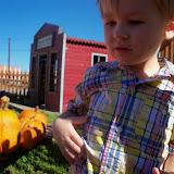Pumpkin Patch 2014 - 116_4450.JPG