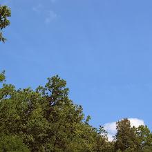 Taborjenje, Lahinja 2005 1. del - img_0957.jpg