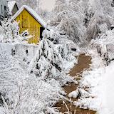 Зимние дачи