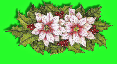 Christmas trad flowers nm2 tinytube.jpg