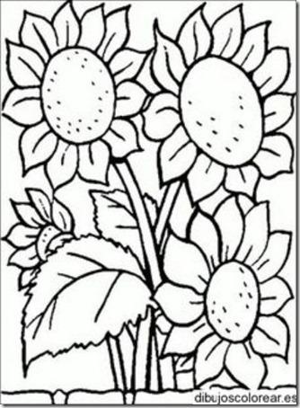 flores masdibujos  (54)