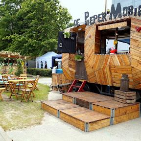 Arendje_2014_Festival_Mundial78.JPG