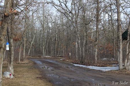 muddy drive March 24