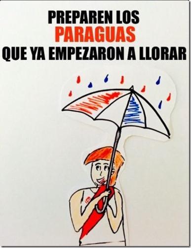 meme peru vs paraguay  (4)