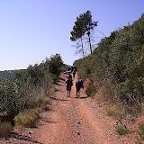 Sortida Sant Salvador de les espasses 2006 - CIMG8394.JPG