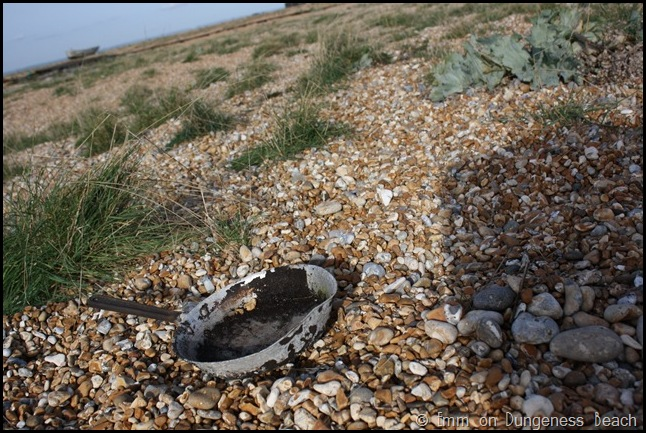 Skillet on Dungeness beach