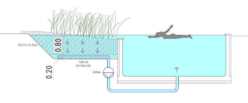 Arquitecturadise o pasado presente futuro piscinas naturales for Filtro piscina natural