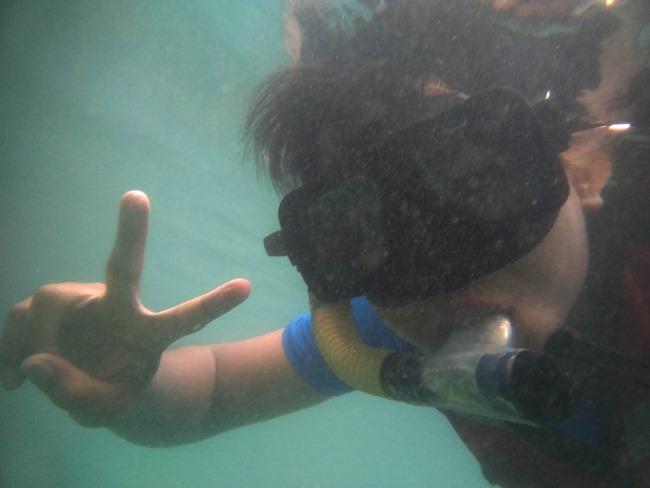 snorkeling di taman laut pulau tioman