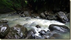 IMG_20180130_Annandale Falls river 1