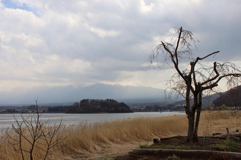 2014 Japan - Dag 11 - marjolein-IMG_1476-0221.JPG
