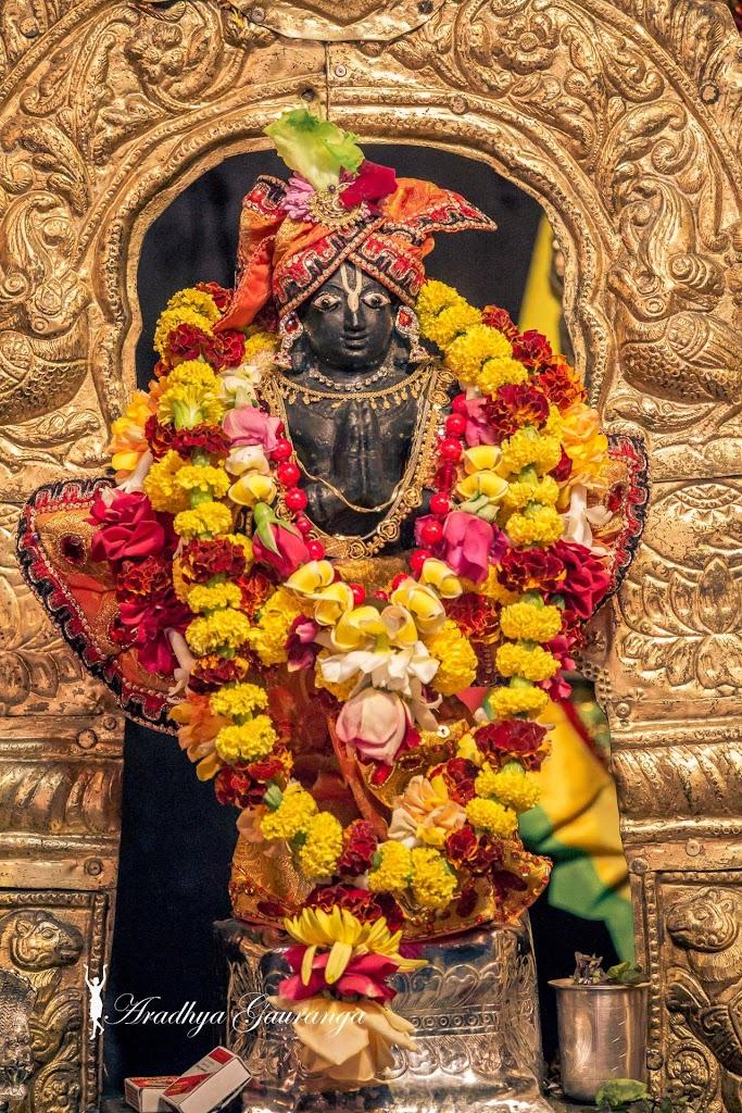 ISKCON Mayapur Deity Darshan 18 Jan 2017 (26)