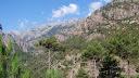 Entrée dans la vallée de la Restonica