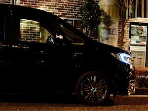 ステップワゴン  SPADA-HYBRID  G-EX   のカスタム事例画像 ゆうぞーさんの2018年12月07日22:49の投稿