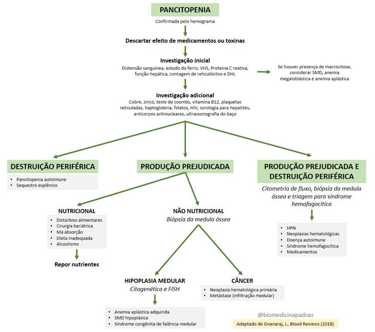 Pancitopenia - investigação das causas e diagnóstico