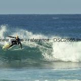 _DSC2666.thumb.jpg