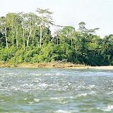 La Tambopata en amont du confluent avec le Rio Malinovski. Août 2004. Photo : J.-M. Gayman