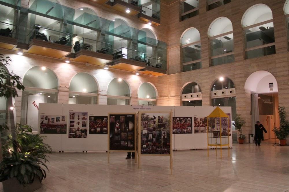 Exposició 15 anys Biblioteca Pública 17-01-11 - 20110117_520_Lleida_Exposicio_15_anys_CdL.jpg