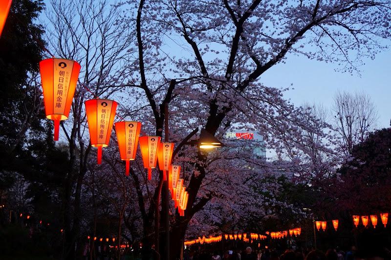 2014 Japan - Dag 1 - britt-DSC03326-0011.JPG