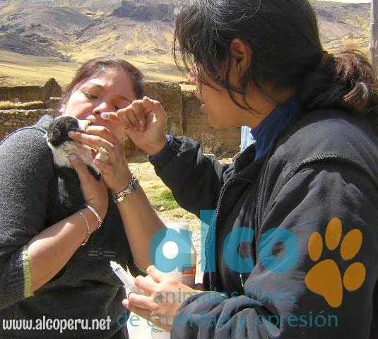 Asistencia Huancavelica por terremoto 2007 (16)