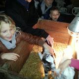 Bevers & Welpen - Boerderij bezoek - 20140322_101734.jpg
