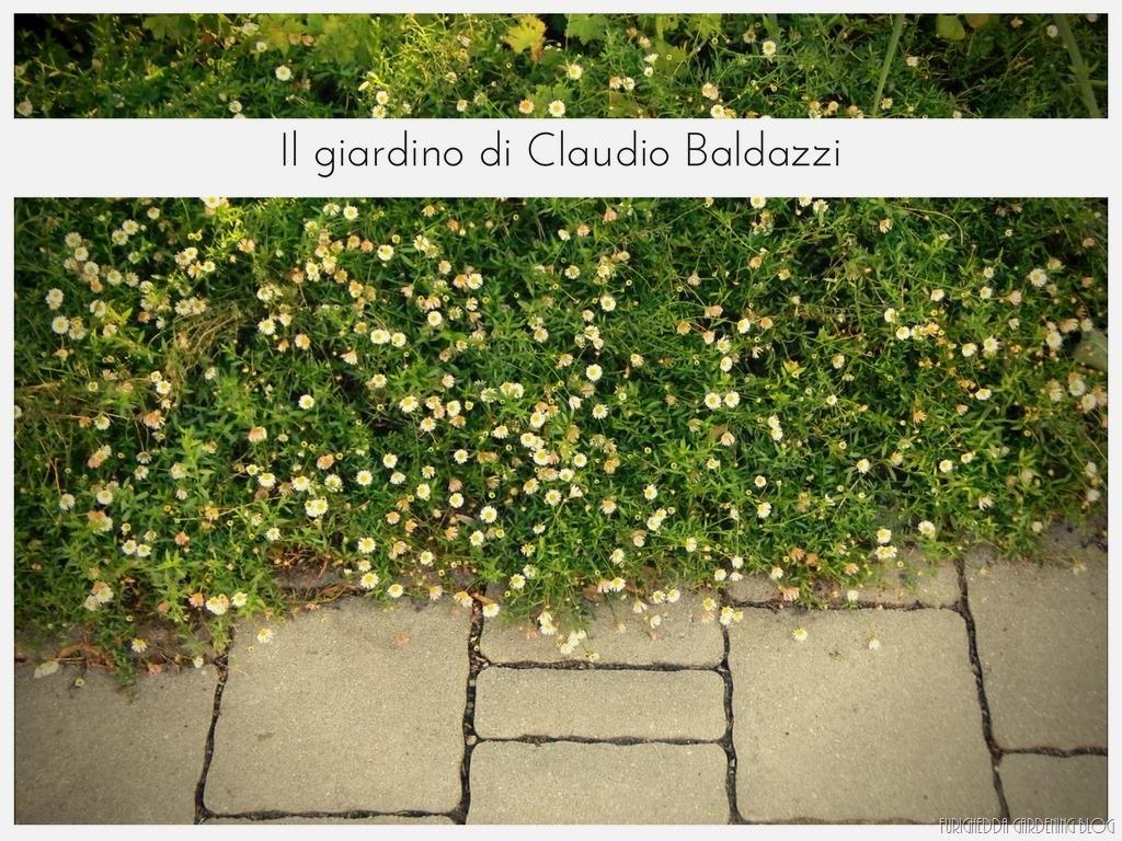 [Il+giardino+di+Claudio+%2822%29%5B5%5D]