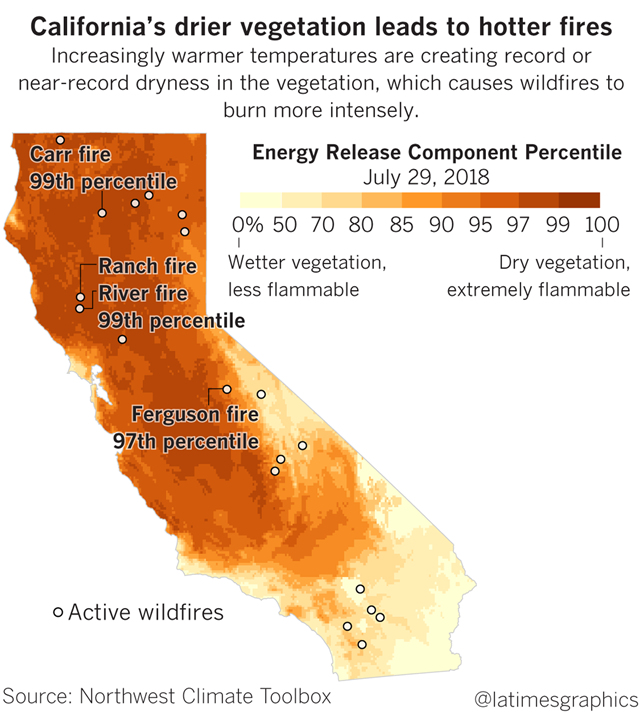 Energy release component percentile for vegetation in California, 29 July 2018. California's drier vegetation leads to hotter fires. Increasingly warm temperatures are creating record and near-record dryness in the vegetation, which causes wildfires to burn more intensely. Data: Northwest Climate Toolbox. Graphic: Los Angeles Times