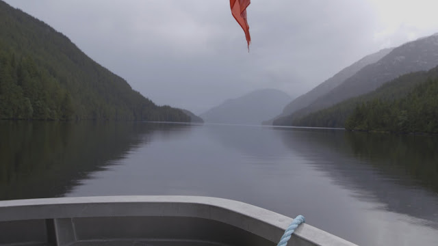 Great Bear Rainforest, BC. Photographer Courtney Quirin