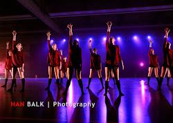 Han Balk Voorster Dansdag 2016-4783.jpg