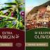 Extra Virgin, W krainie oliwek - Annie Hawes