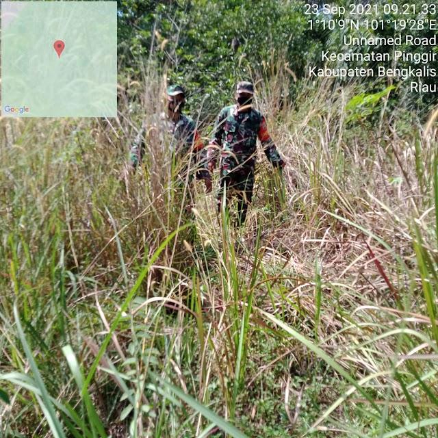 Personel Koramil 04/Mandau Tinjau di Wilayah Rawan Terbakar Kecamatan Pinggir