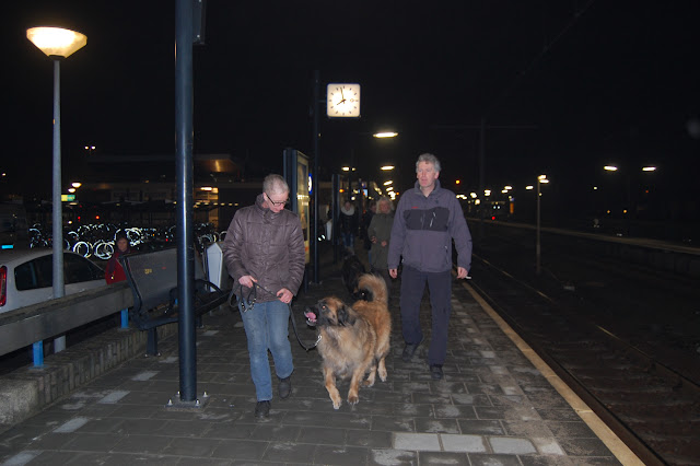 Jonge Hond centrum Emmen - 2012-04-01%2B011.JPG