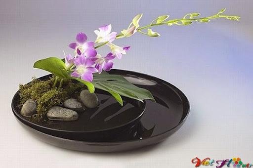 Cắm hoa theo phong cách Nhật Bản