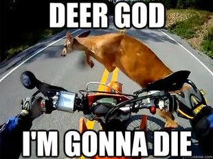Funny%2BMotorcycle%2BMemes%2B %2B21 funny motorcycle memes motorcycle forum,Funny Motorcycle Memes